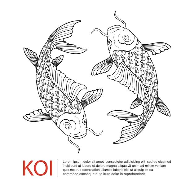Логотип koi carp Premium векторы