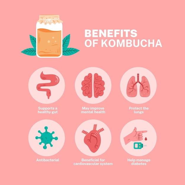 Benefici del tè kombucha illustrati Vettore gratuito