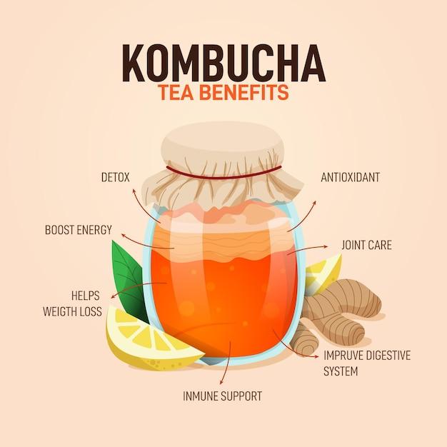 Benefici e ingredienti del tè kombucha Vettore gratuito