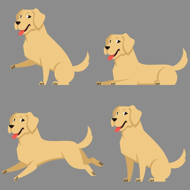 Labrador in different poses. beautiful dog in cartoon style. Premium Vector