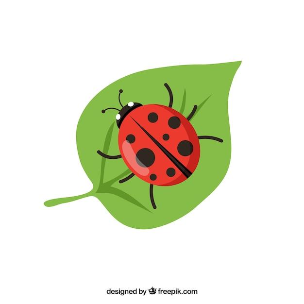 Ladybug vector vector free download ladybug vector free vector stopboris Image collections