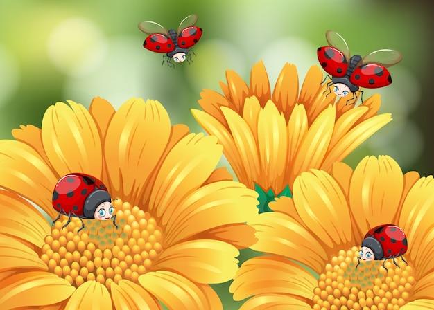 Ladybugs flying in the garden Free Vector