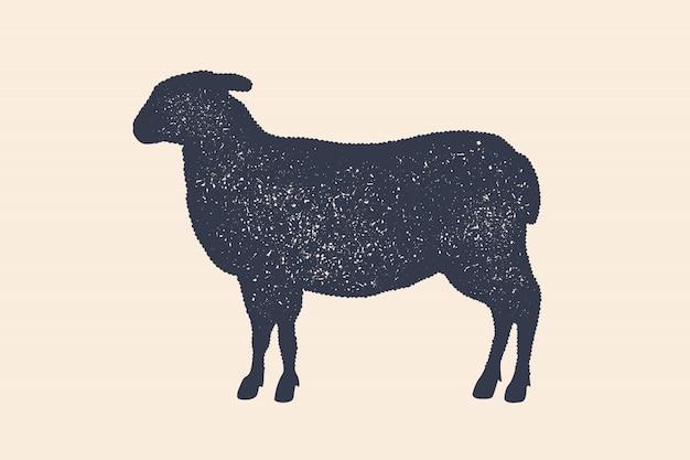 Ягненок, овца. старинный логотип, ретро принт, плакат для мясной лавки, силуэт овец. шаблон логотипа для мясного бизнеса, мясной магазин. силуэт овец, белый фон. иллюстрация Premium векторы