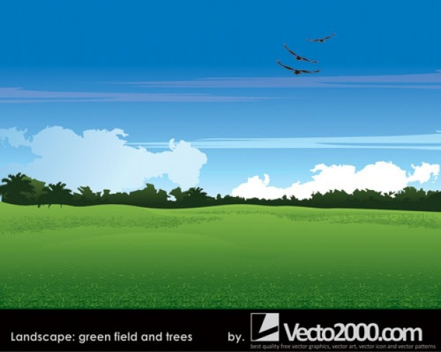 Field Landscape Vector Landscape Green Field And