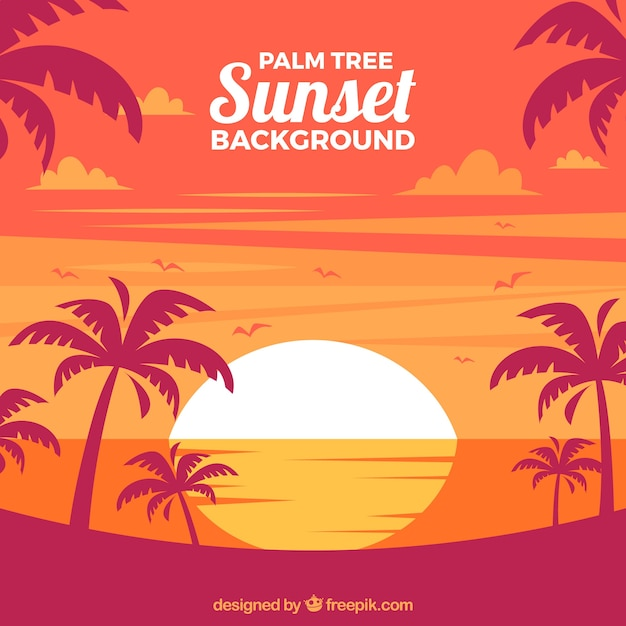 Landscape background at sunset with palm\ trees