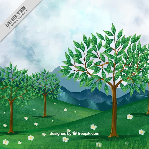 Landscape background of trees and mountains  Free Vector