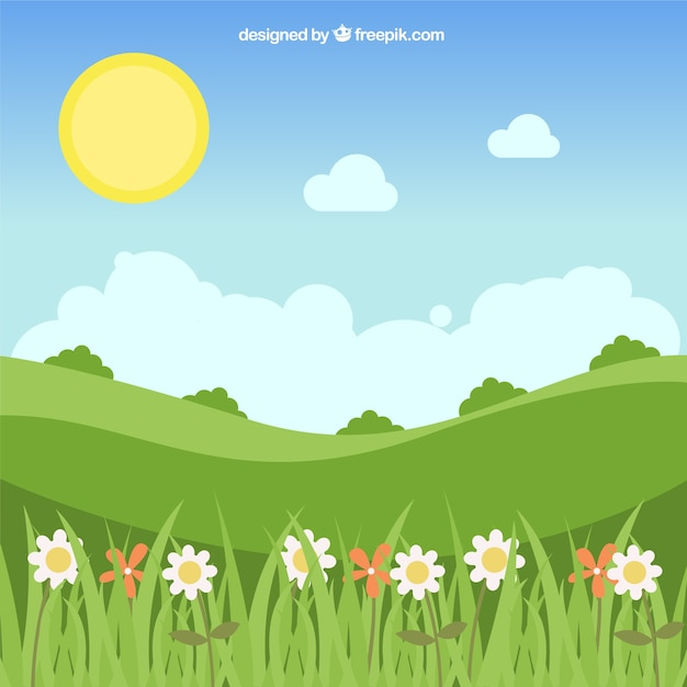Landscape background with daisies and pretty\ sun
