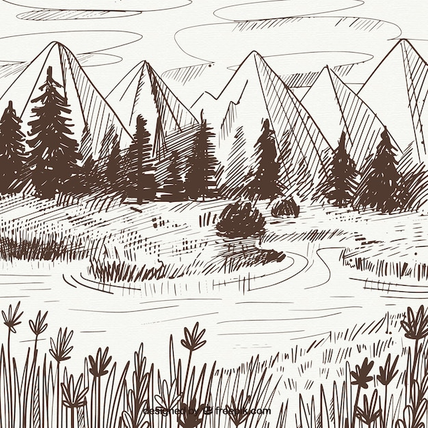 Landscape sketch of mountains and pines