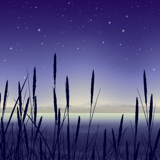 Landscape in a swamp at night Free Vector