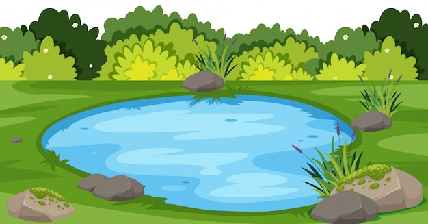 Landscape  with small pond in park Premium Vector