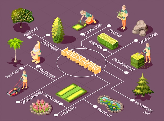 Landscaping isometric flowchart with garden designer green plants and decorations on purple Free Vector