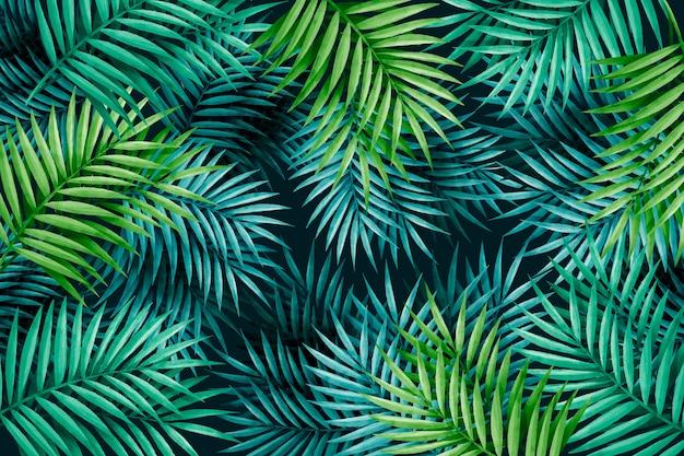 Grande sfondo di foglie verdi esotiche Vettore gratuito