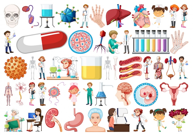 Large medical object set Free Vector