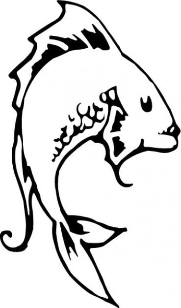 Lateral catfish Free Vector