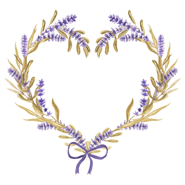 Lavender flower heart with ribbon watercolor Premium Vector