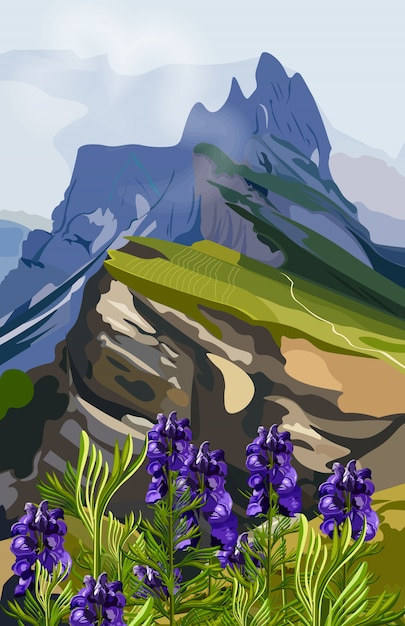 Lavender and mountains hills illustration Premium Vector