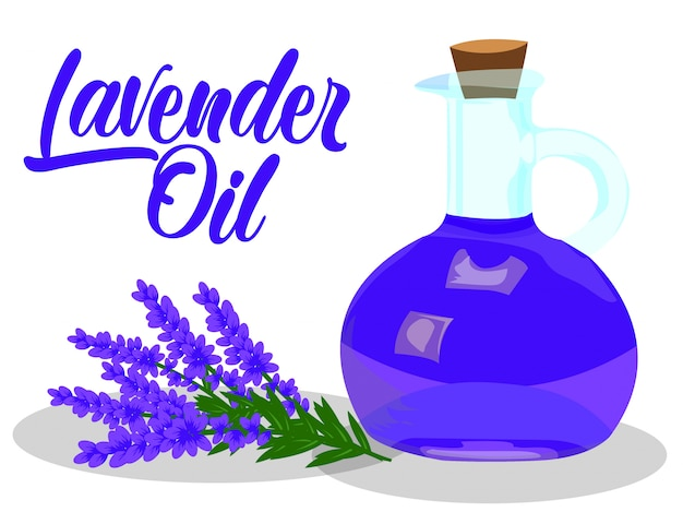 Lavender oil vector on white background Premium Vector
