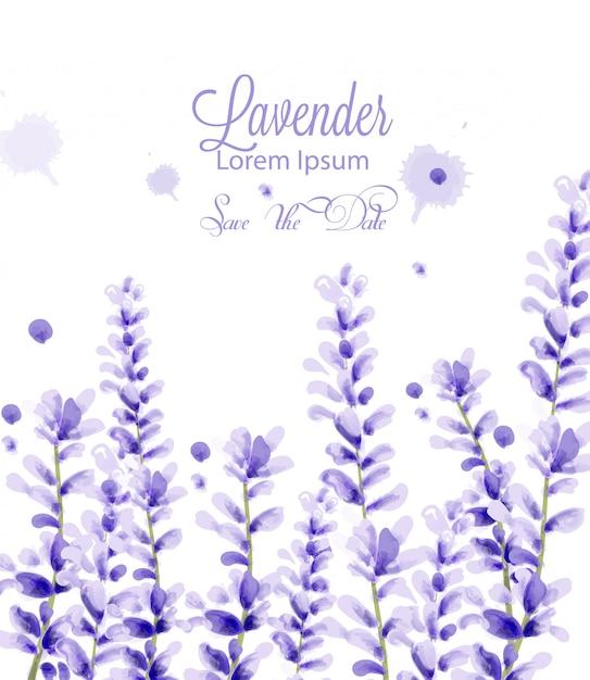 Lavender watercolor card Premium Vector