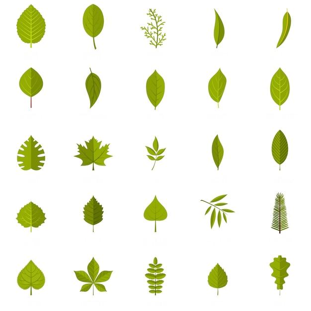 Leaf icons set Premium Vector
