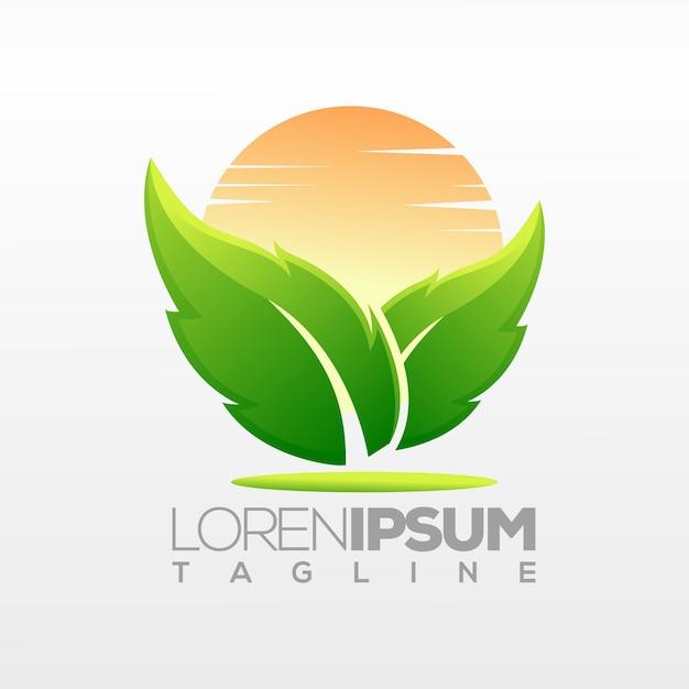 Leaf logo design, illustration, template Premium Vector