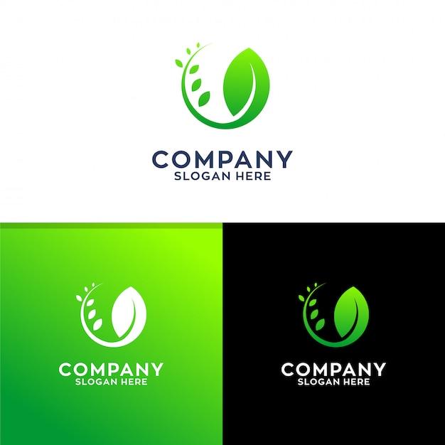 Leaf logo design Premium Vector