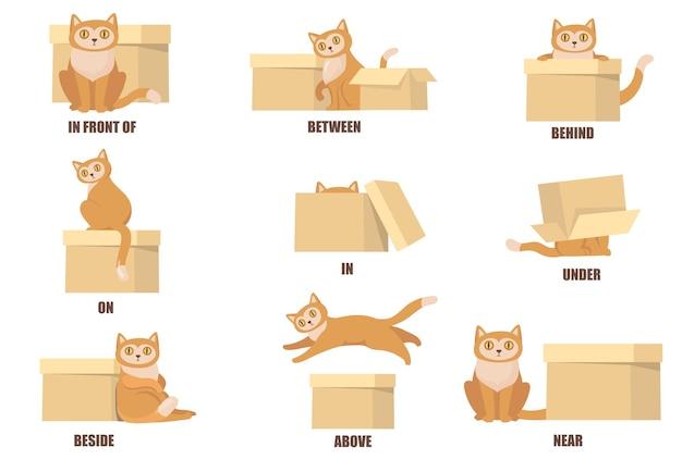 고양이와 상자 플랫 세트의 도움으로 전치사 학습 무료 벡터