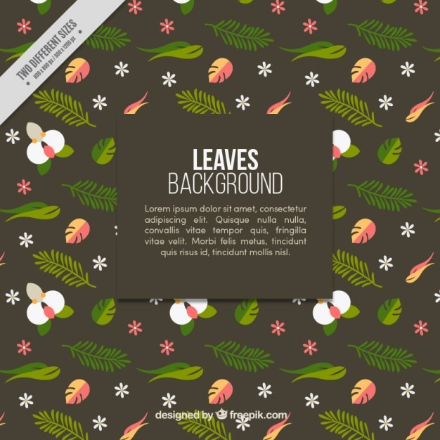 Leaves background with white flowers