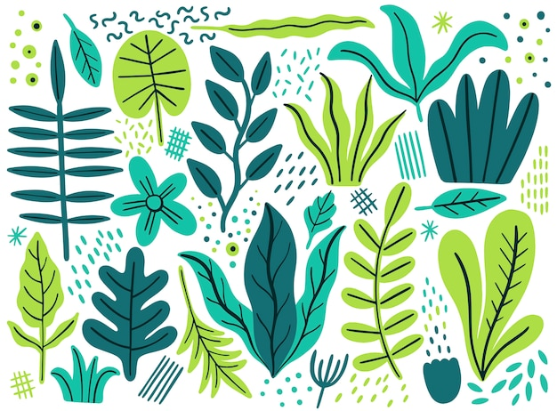 Leaves flat set. tropical plants isolated on white background Premium Vector