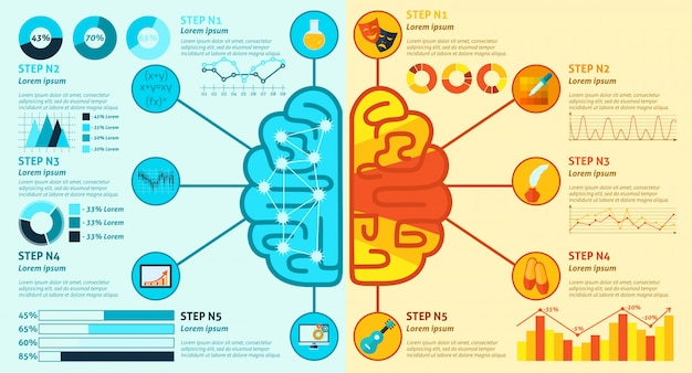 Left and right brain infographics Free Vector