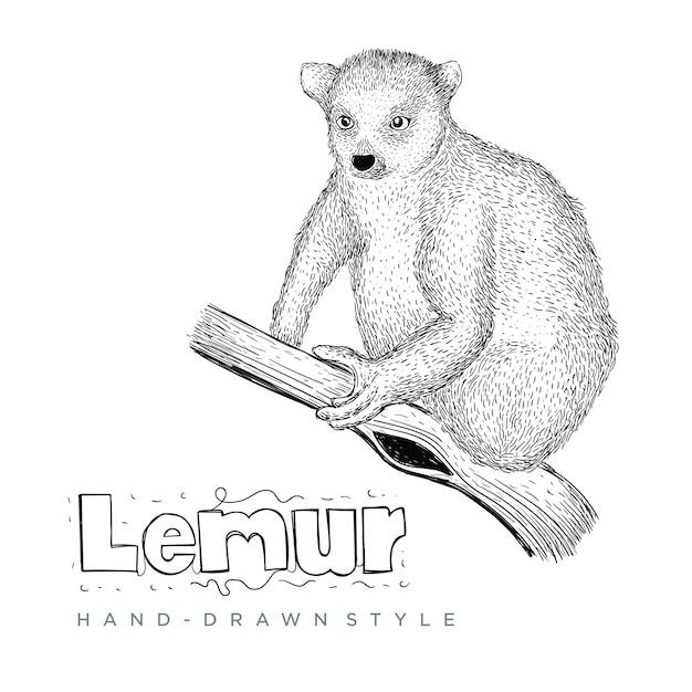 キツネザル手描き動物イラスト Premiumベクター