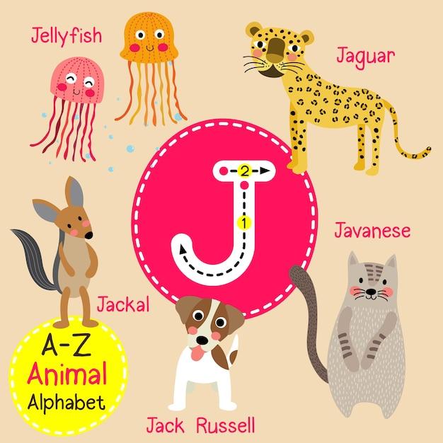 Letter j zoo alphabet Premium Vector