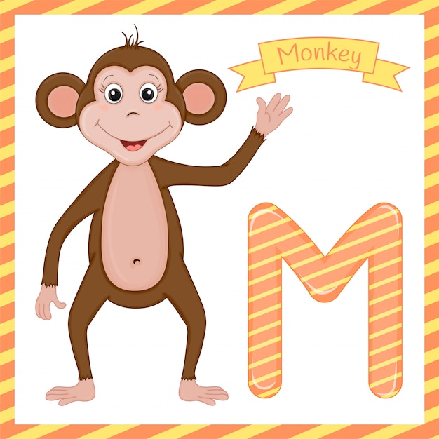 Letter m is for monkey cartoon alphabet Premium Vector