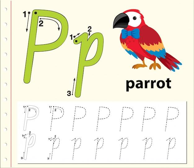 Letter p tracing alphabet worksheets Premium Vector