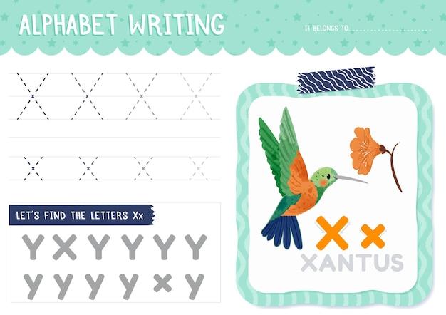 Xantus鳥と手紙xワークシート Premiumベクター