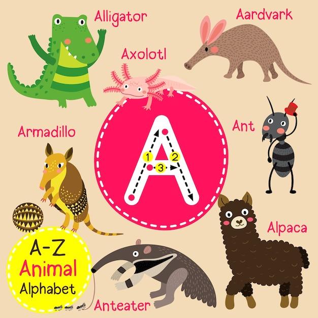 Letter a zoo alphabet Premium Vector