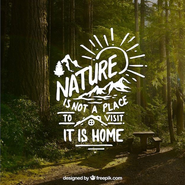 Lettering and quote design on forest background Free Vector