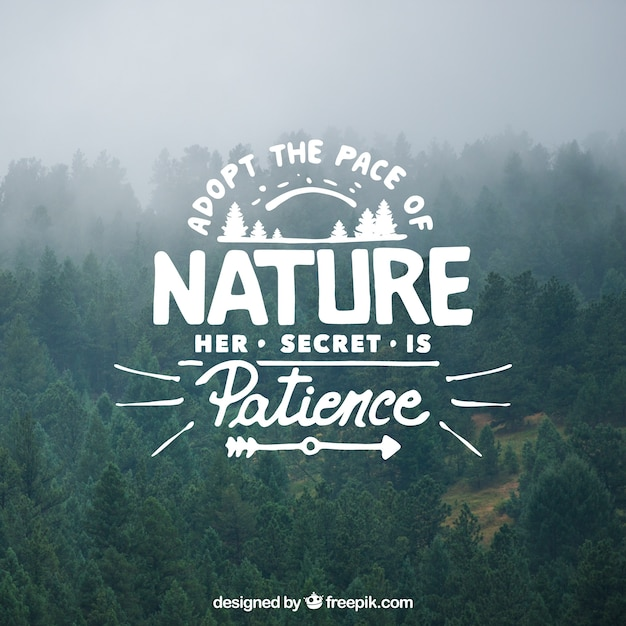 Lettering and quote design on tree background Free Vector