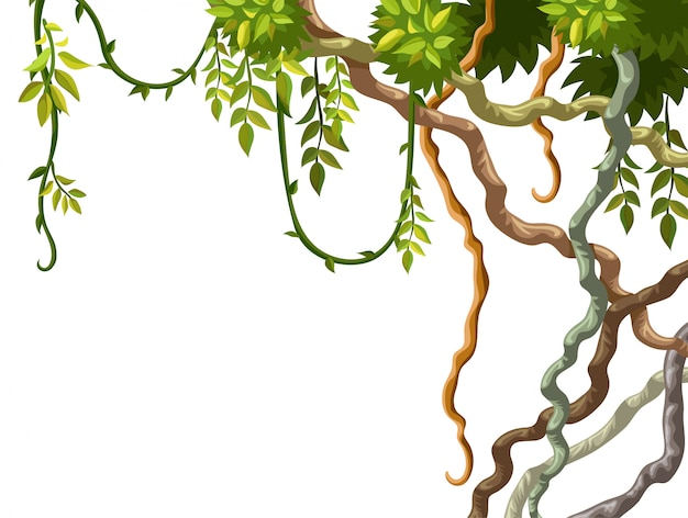 Liana branch and frame from leaves. Free Vector