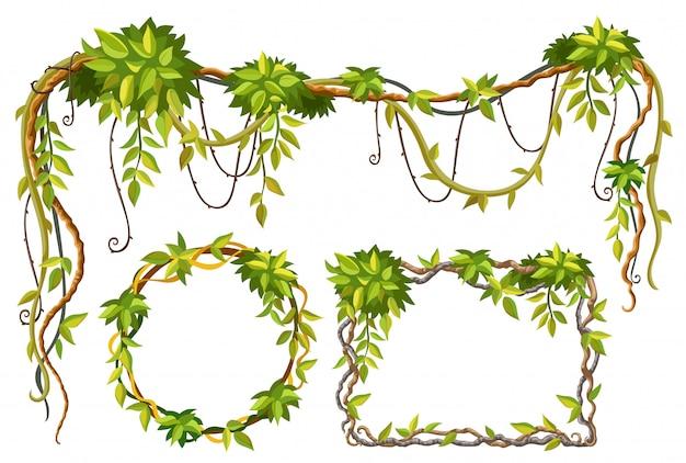 Лиана ветки и листья Бесплатные векторы