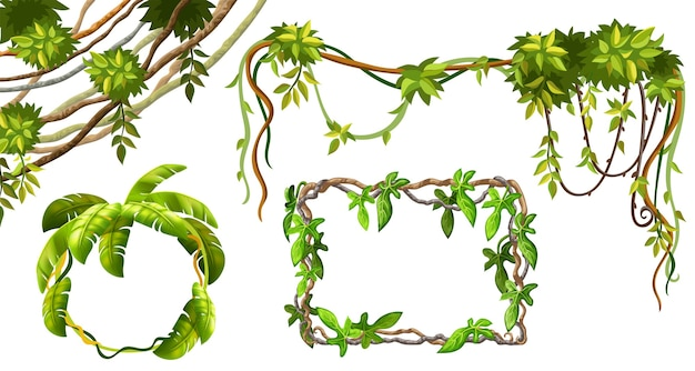 Liana branches and leaves. Free Vector