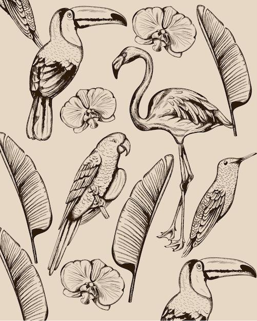 熱帯の動物や葉のラインアート構成。フラミンゴ、トゥカノ鳥、オウム、ツバメ 無料ベクター