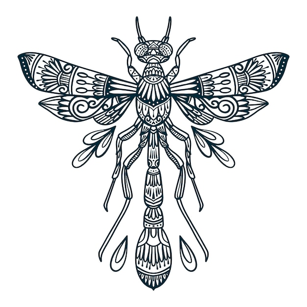 Line art illustration of dragonfly beetle Premium Vector