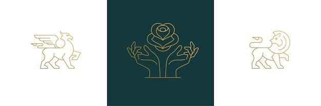 Набор элементов дизайна женского украшения - цветочные и женские жесты руки иллюстрации Premium векторы