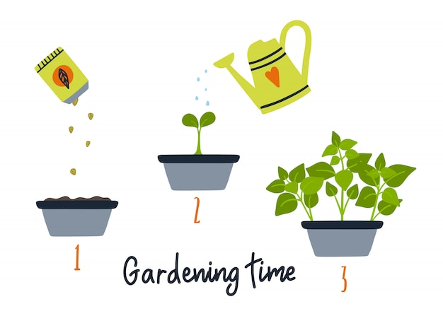 Line sprout and plant growing. Premium Vector