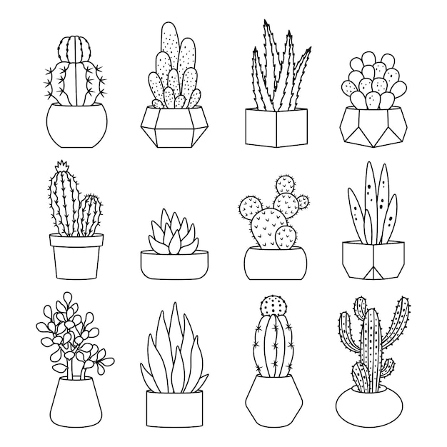 Line style cactus and succulents icon set Premium Vector