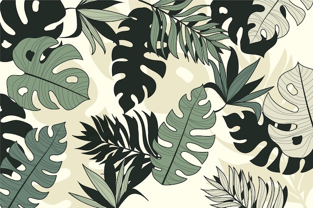 Linear tropical leaves style Free Vector