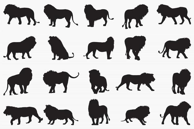 Силуэты льва Premium векторы