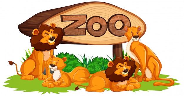 Лев со знаком зоопарка Бесплатные векторы