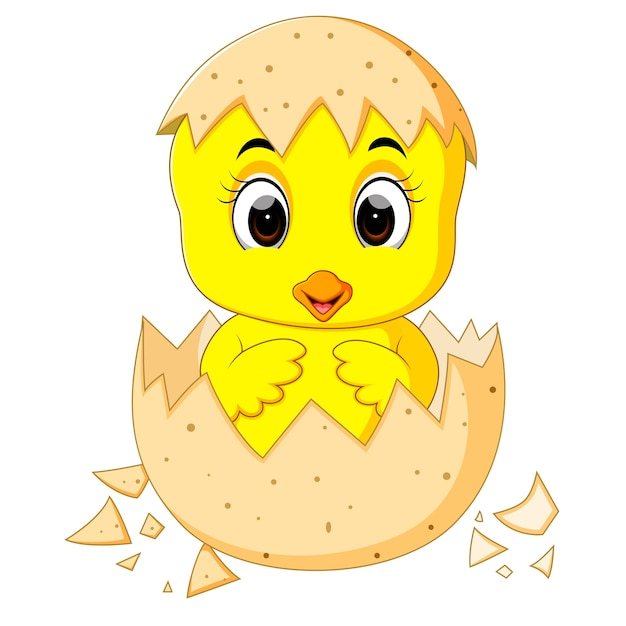 Little cartoon chick hatched from an egg Premium Vector