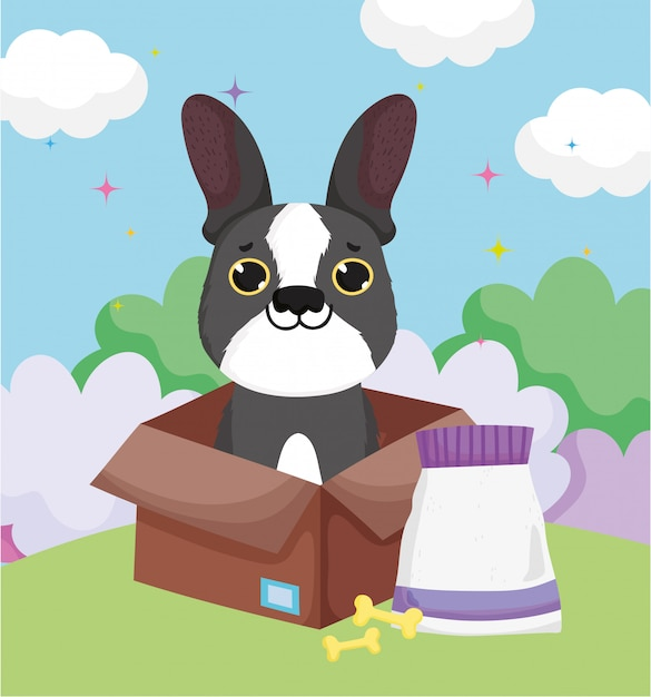 Little dog in box with bones and food pets Premium Vector